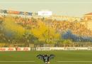 """Parma, D'Aversa: """"Bruno Alves non ci sarà contro il Genoa"""""""